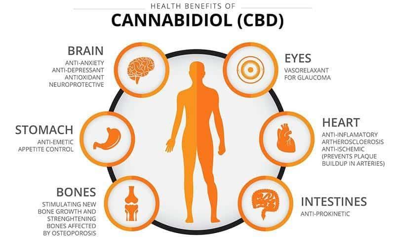 Cbd Candiol Health Benefits Chart