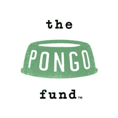 The Pongo Fund Portland charity