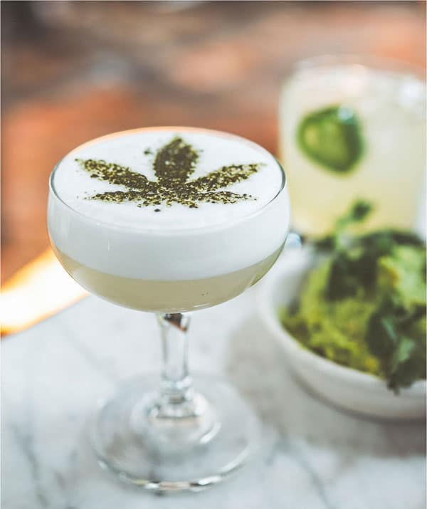 Cannabis Drinks for Events