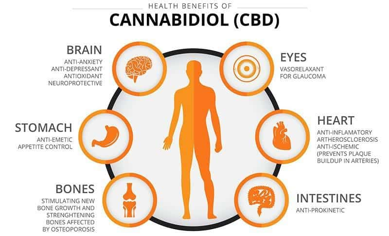 CBD Cannabidiol Health Benefits Chart